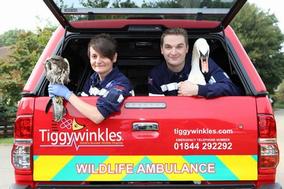 Toyota_Hilux_Ambulance_and_Tiggywinkles_to_the_Rescue_Toyota_47389