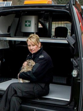 Scottish SPCA worker with rabbit