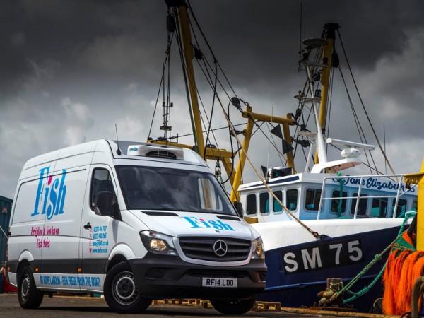 Mercedes, Sprinter, 313, CDI, boat