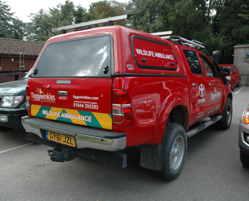 Toyota Hilux animal ambulance